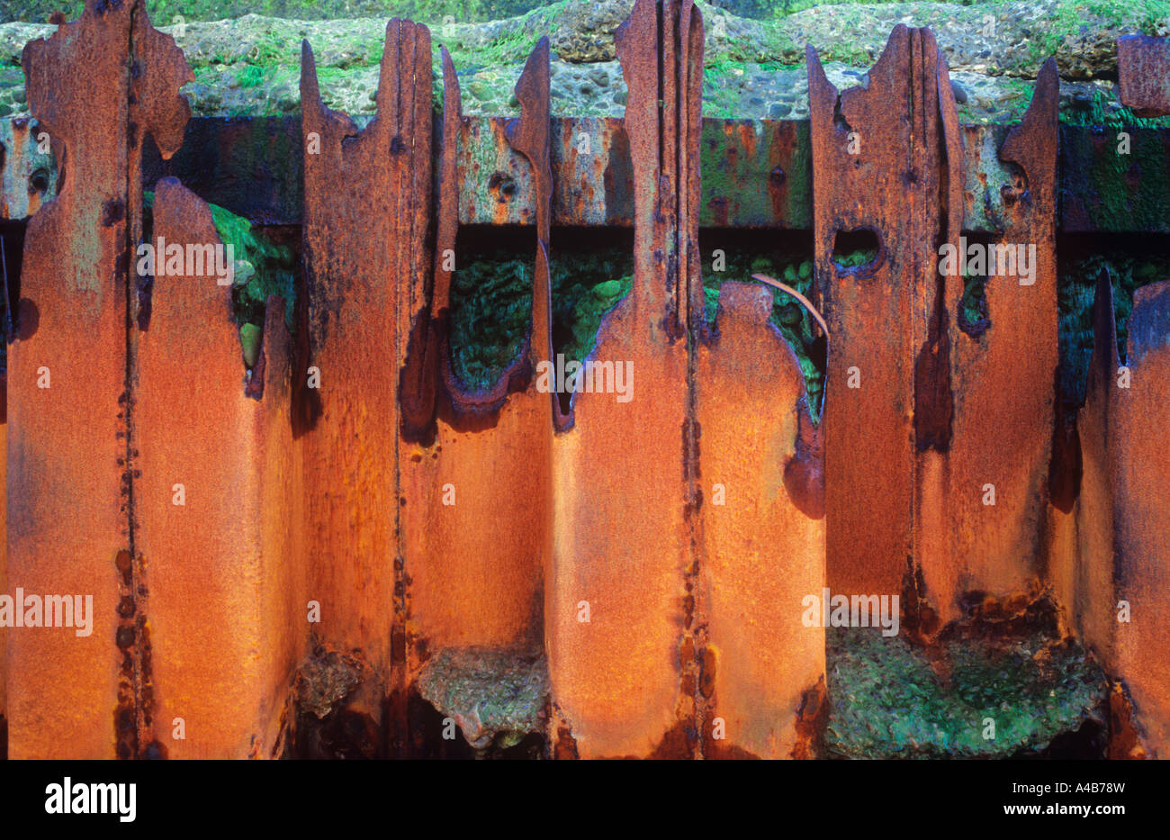 Detail of iron sea defence so rusted and broken as to be useless with eroded concrete seawall behind - Stock Image