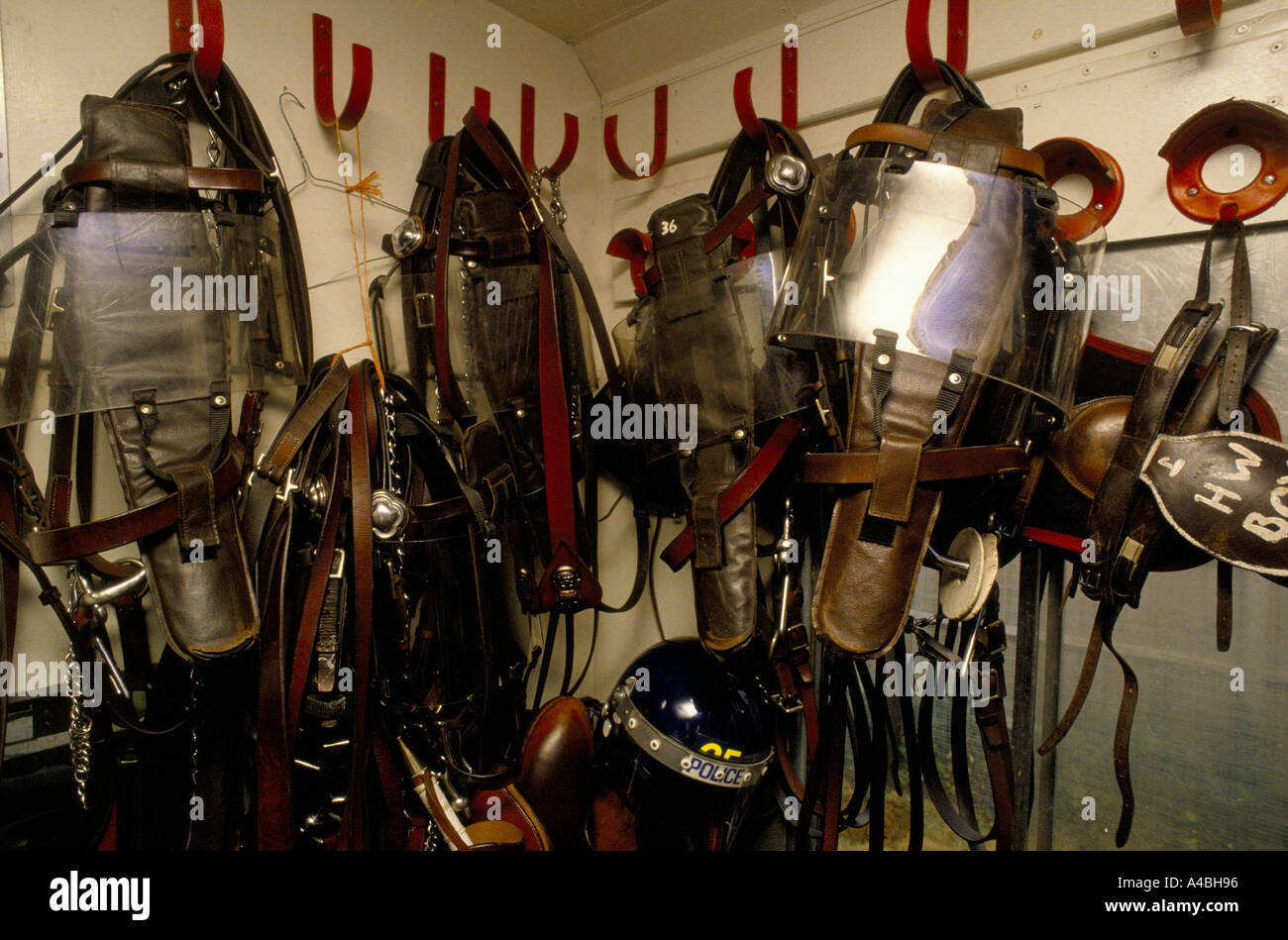 Police Horses Training Police And Horse Riot Protection Gear Stock Photo Alamy