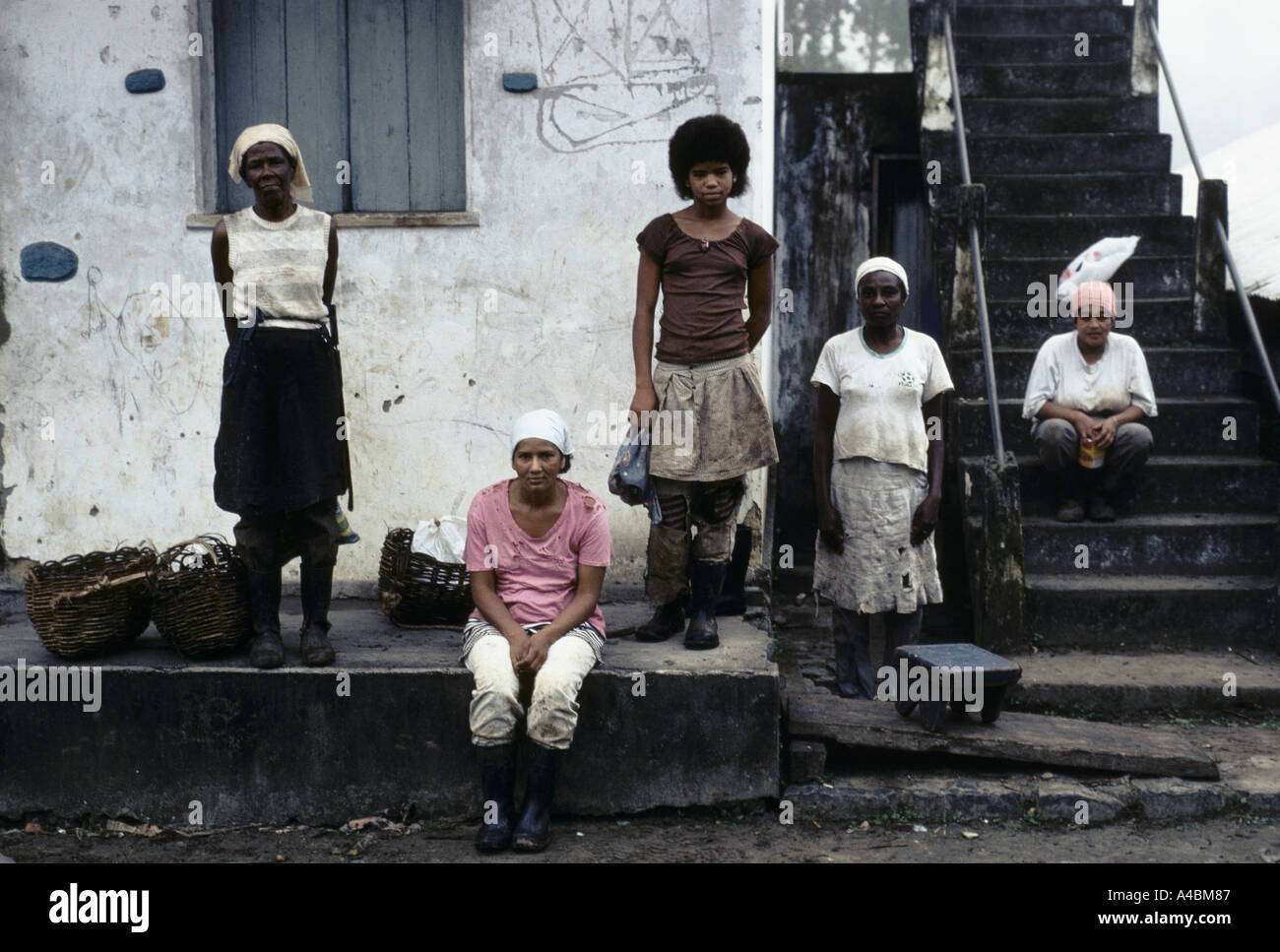 Different generations of females working on a cocoa plantation, Bahia province, Brazil, July 1991 - Stock Image