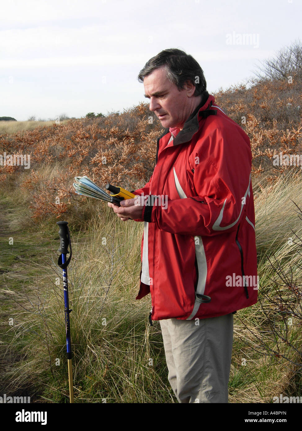 Generic shot of a male walker using a GPS handheld navigation system on a coastal hike at Whitecraigs near North - Stock Image