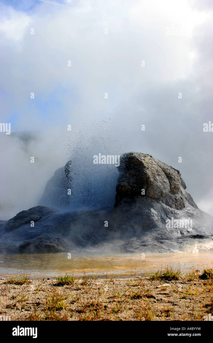 grotto geyser, yellowstone national park, wyoming Stock Photo