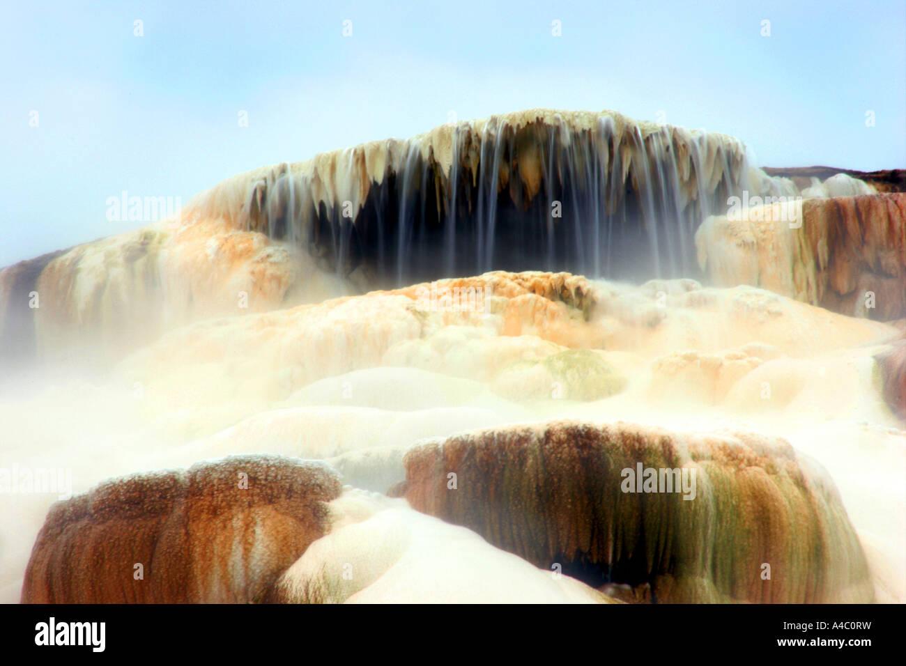 minerva  terrace, mammoth hot springs, yellowstone national park, wyoming - Stock Image
