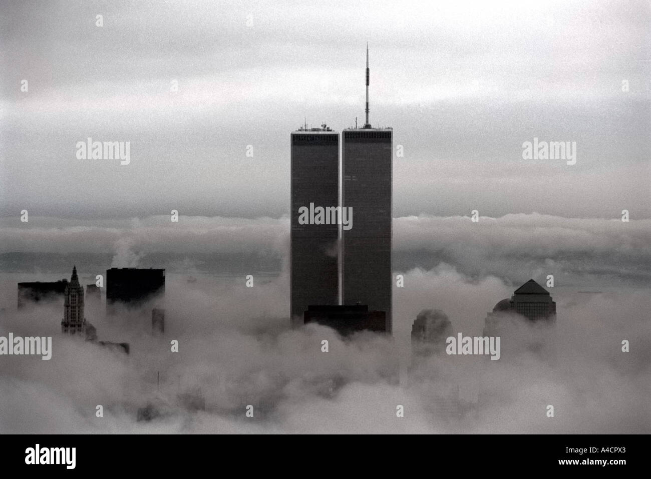 The World Trade Center rises above the fog - Stock Image