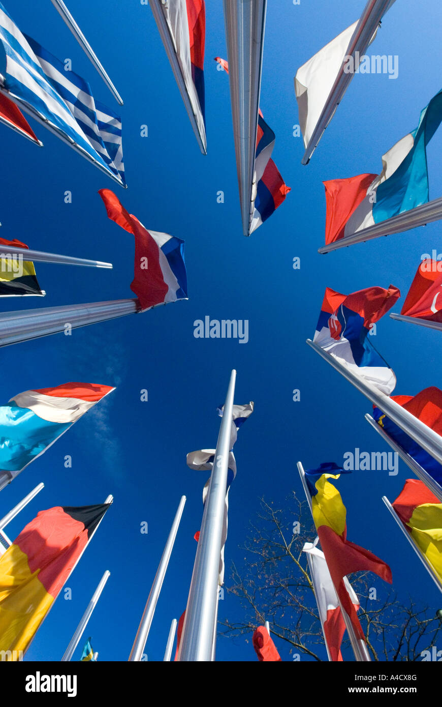many european Flags standing together in blue sky Stock Photo
