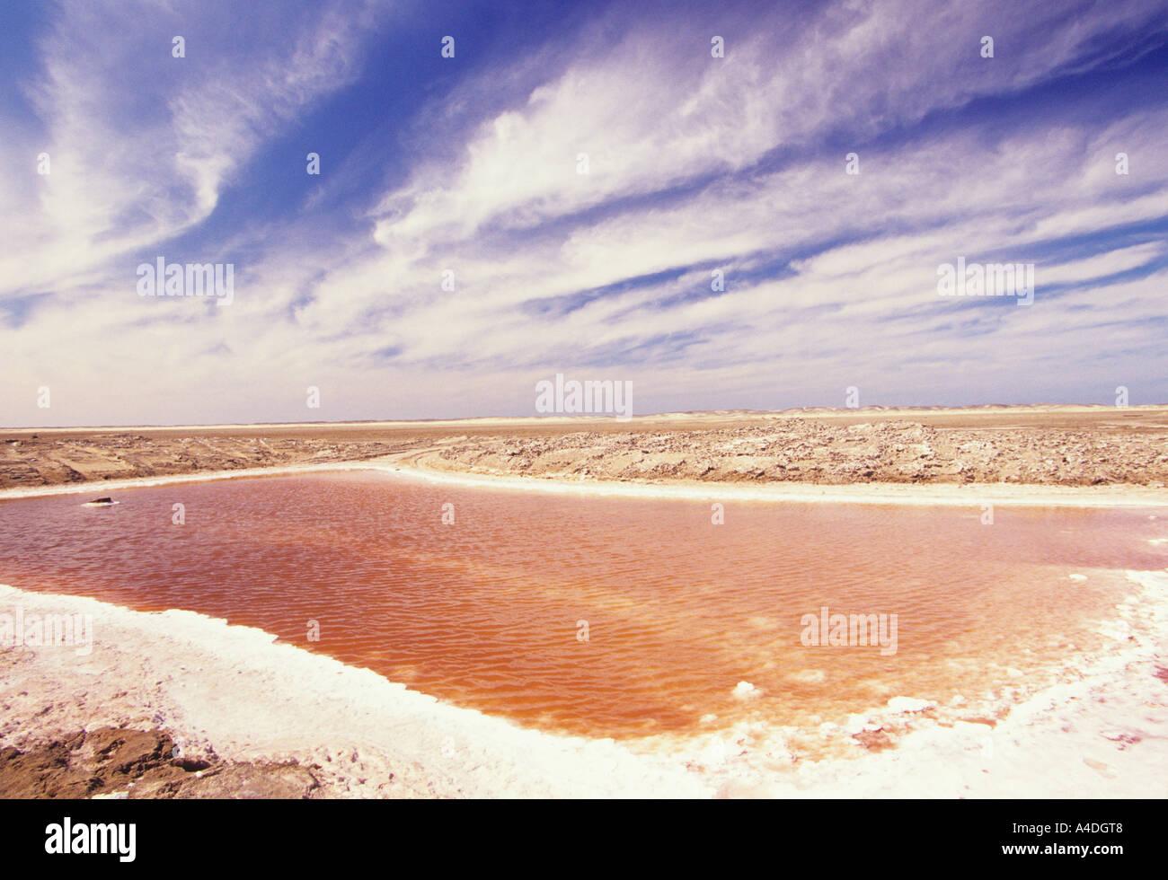 Red bloom of micro organisms in salt pan, Namibia - Stock Image
