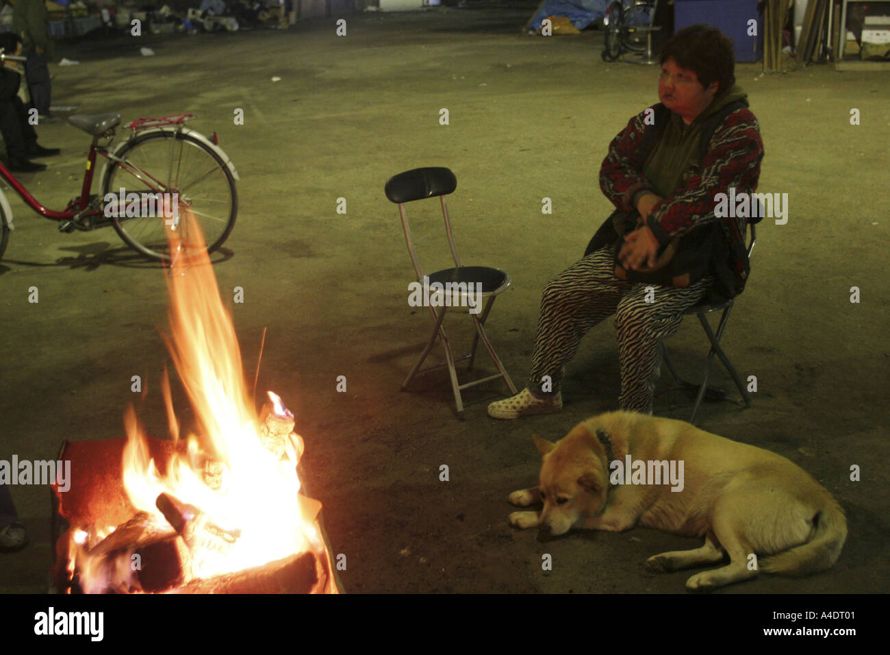 Unemployed homeless woman and dog by fireside, Osaka, Japan. - Stock Image