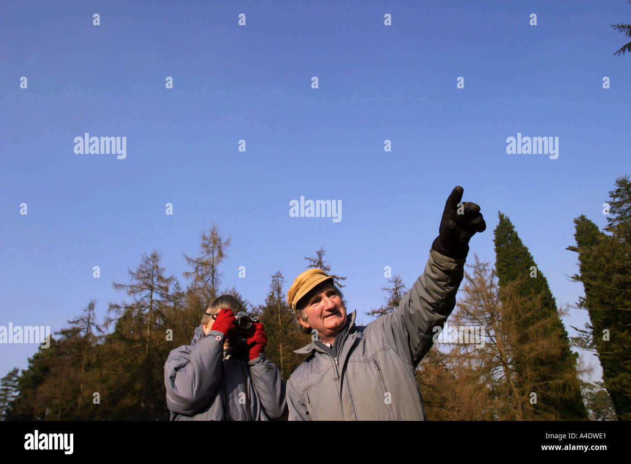 Two visitors birdwatch and photograph at the Bedgebury National Pinetum in Kent UK - Stock Image