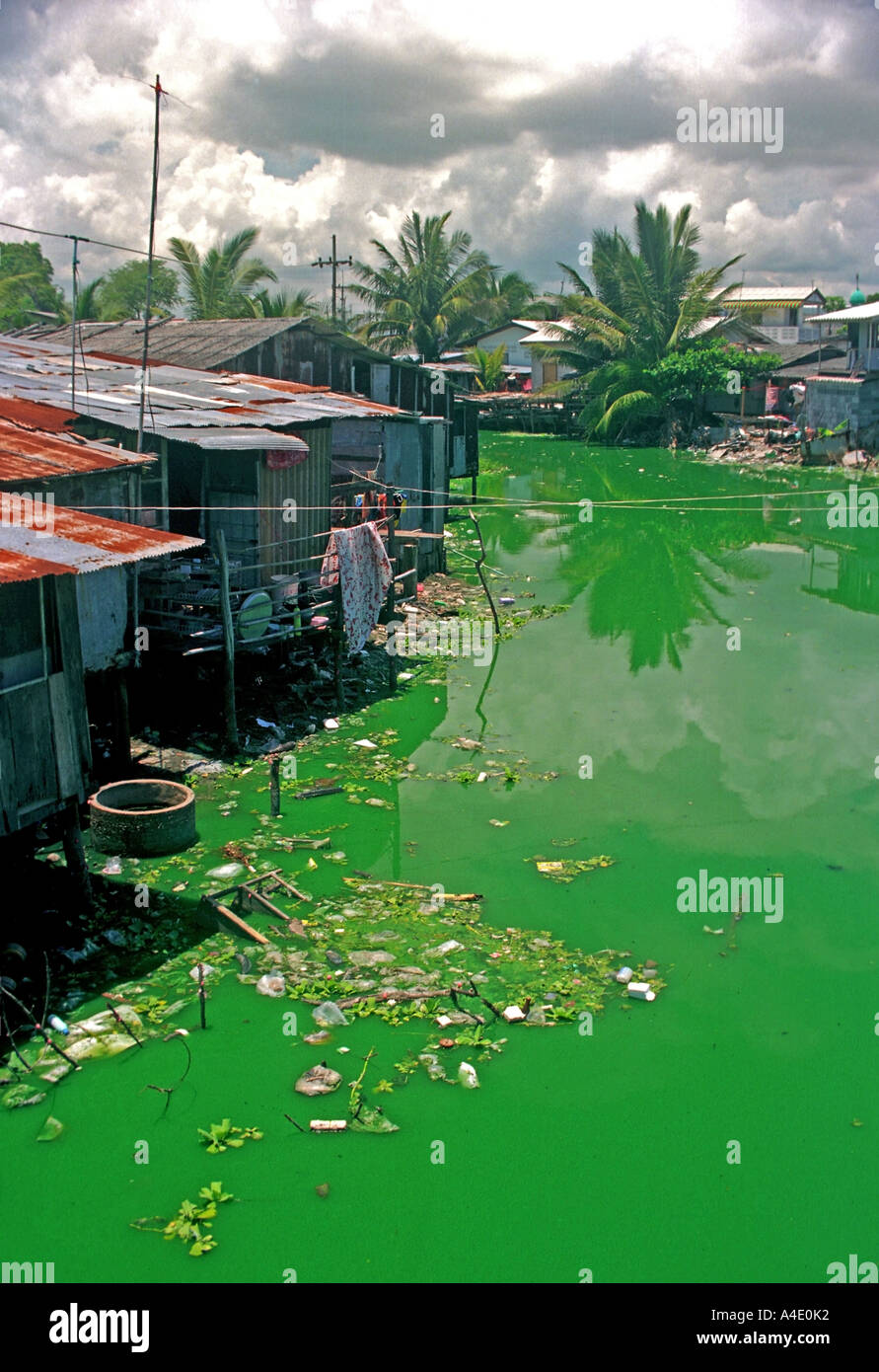 Polluted water at Kao Seng, a village south of Songkhla, southern Thailand. EA7 Stock Photo