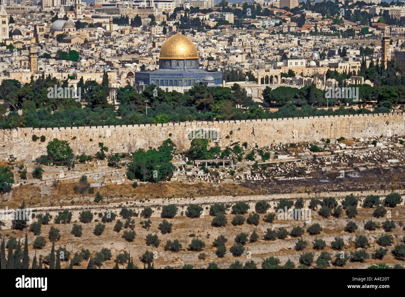 Jerusalem Old City And Dome Of The Rock From Garden Of Gethsemane,  Jerusalem, Israel