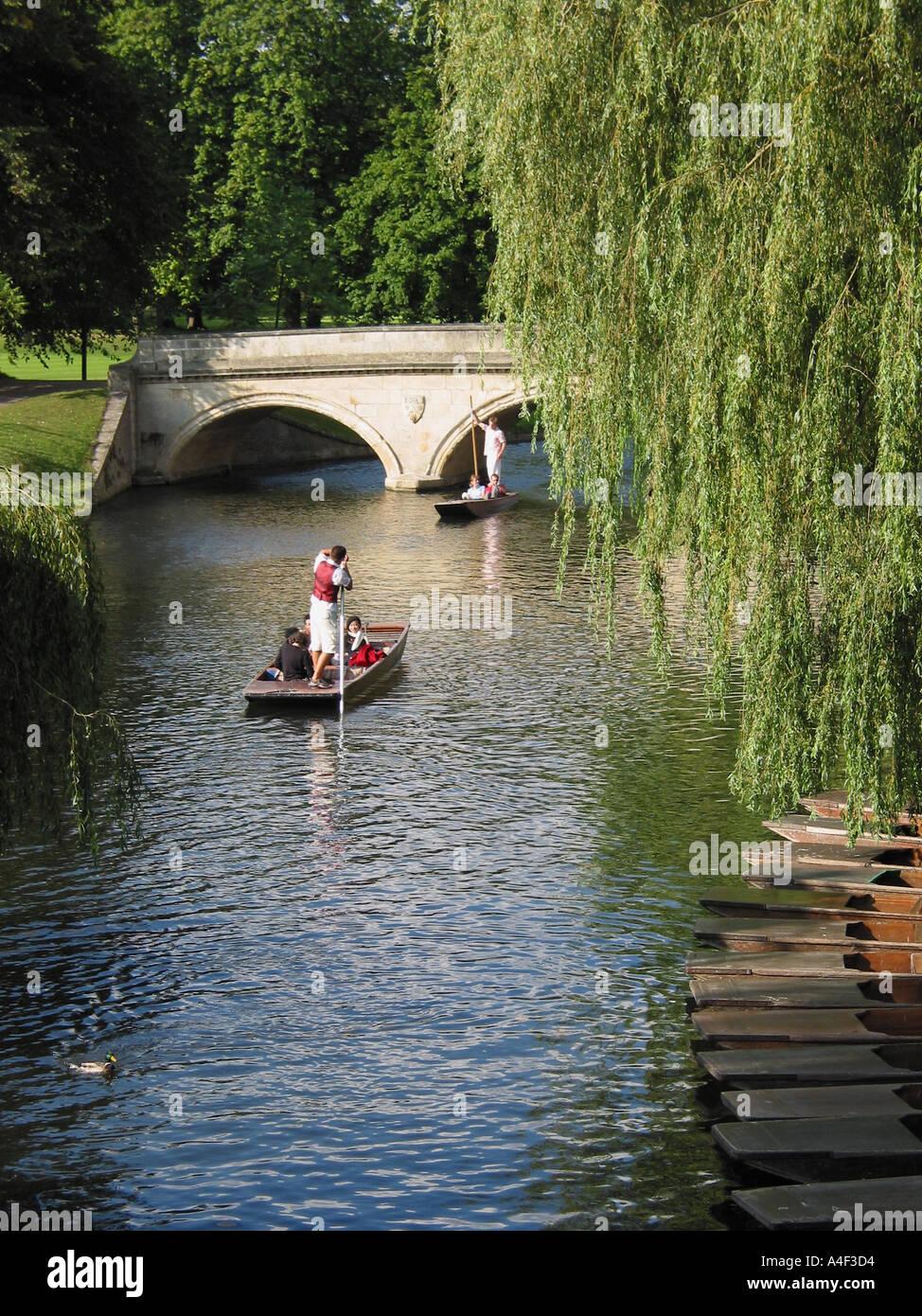 Punting River Cam Cambridge Cambridgeshire England GB Stock Photo