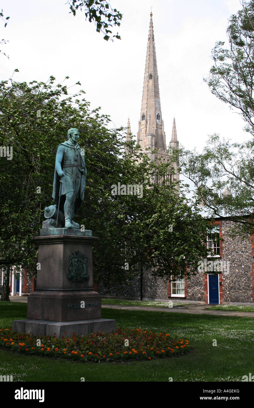 Statue of Arthur Wellesley, Duke of Wellington, in the grounds of Norwich Cathedral, Norfolk - Stock Image