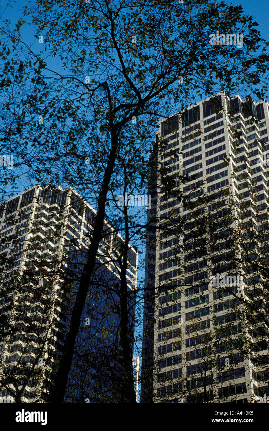 Twin towers of the Chicago Mercantile Exchange Center buildings Chicago Illinois and bare tree on winter day Stock Photo