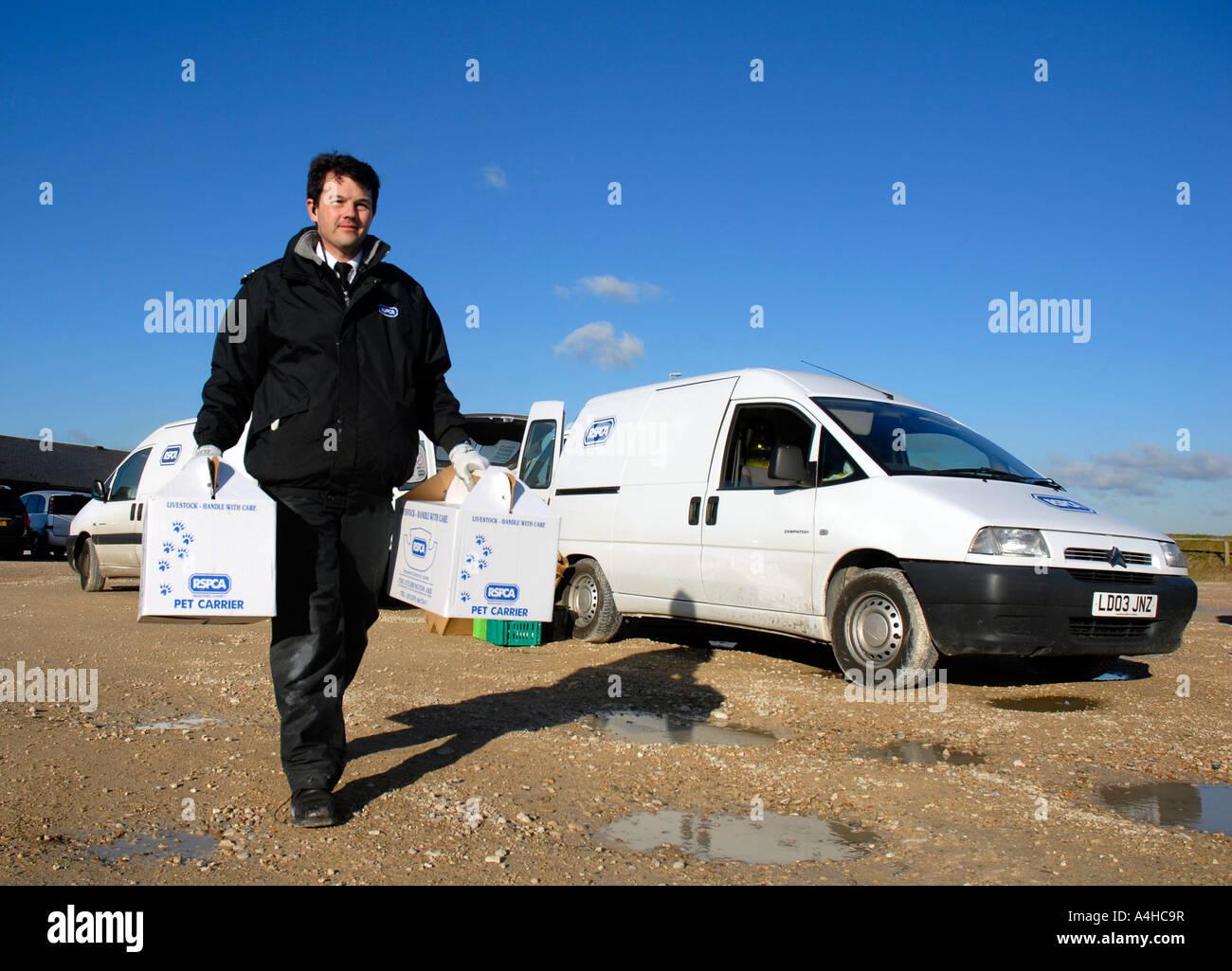 RSPCA officer at work, Britain UK - Stock Image