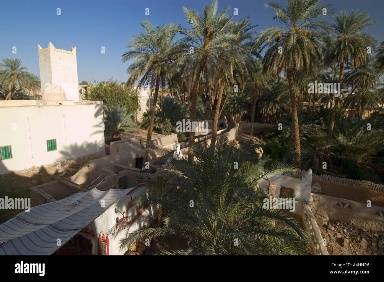 Palm garden at Ghadames, Ghadamis, Unesco world heritage site, Libya ...
