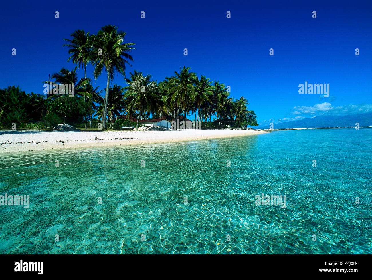 Moorea Tahiti Stock Photo 11057718 Alamy