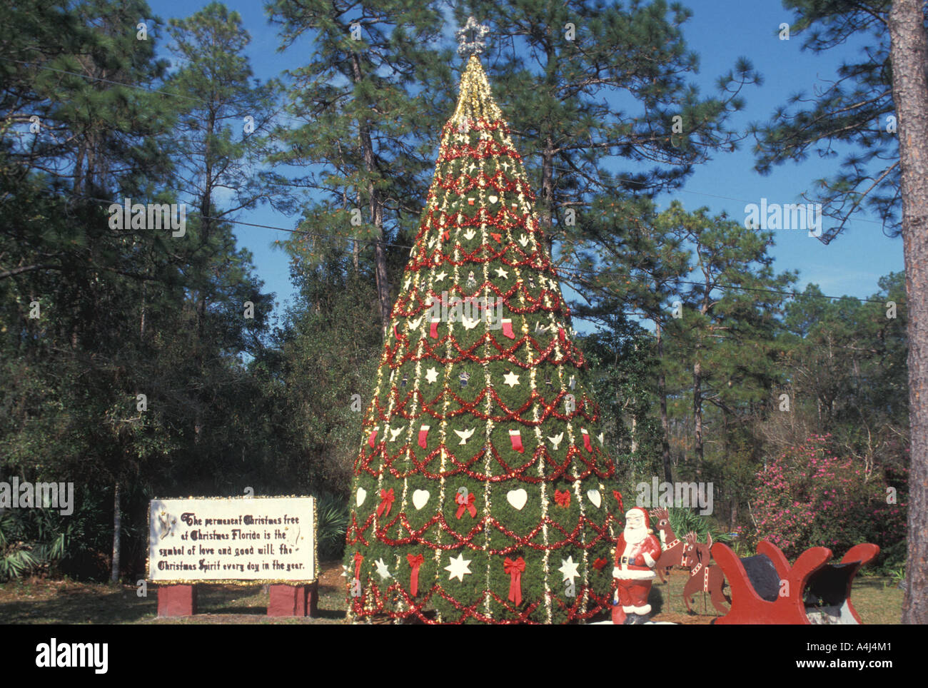 Christmas Town Florida.Christmas Tree Decorated At Town Of Christmas Florida Where