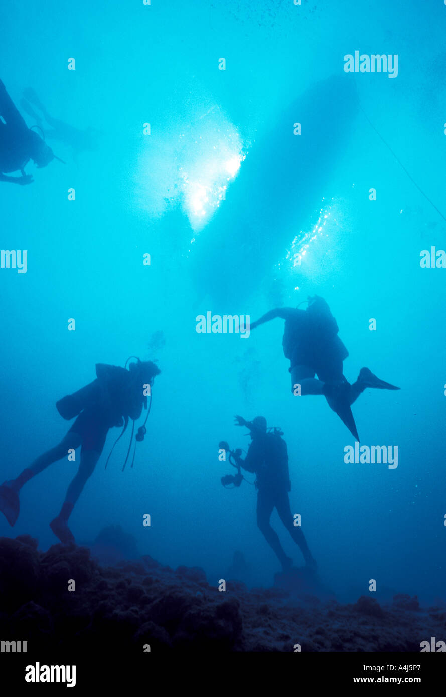 Underwater Scuba divers silhouettes swim to surface with dive boat and bright sun in background - Stock Image