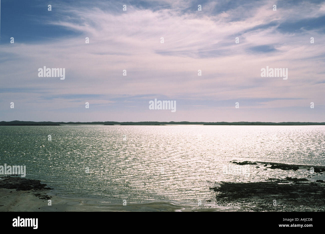 The Coorong South Australia Saltwater lagoon with seabirds flying over water - Stock Image