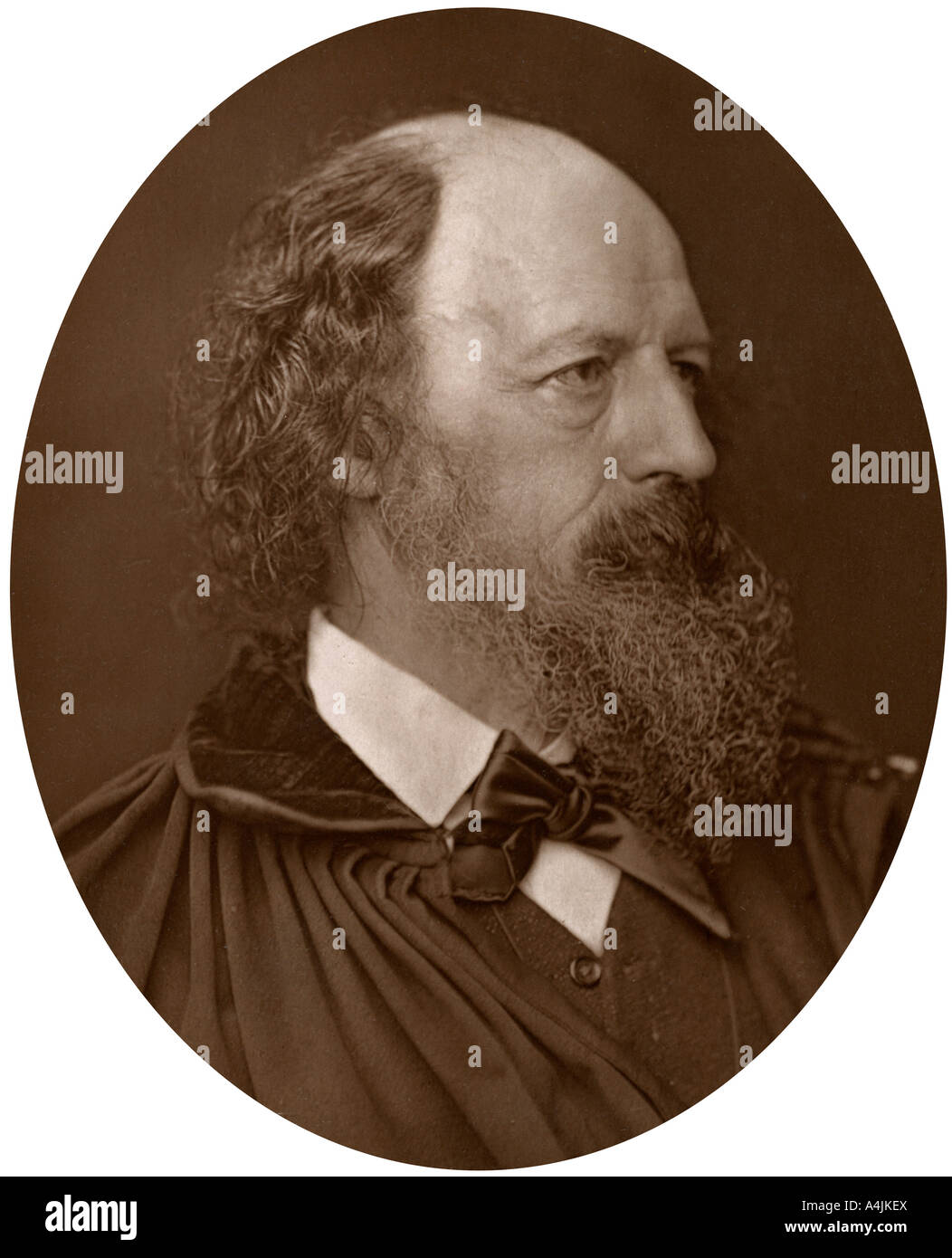 Alfred Tennyson, DCL, FRS, English Poet Laureate, 1883.Artist: Lock & Whitfield - Stock Image