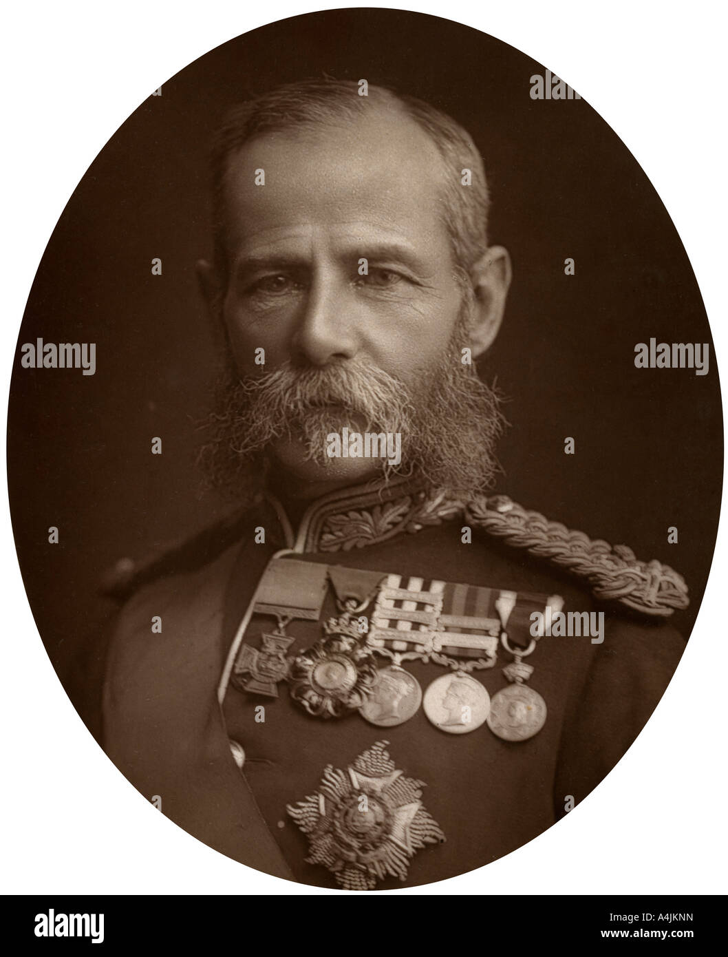 General Sir Frederick Sleigh Roberts, 1882.Artist: Lock & Whitfield - Stock Image