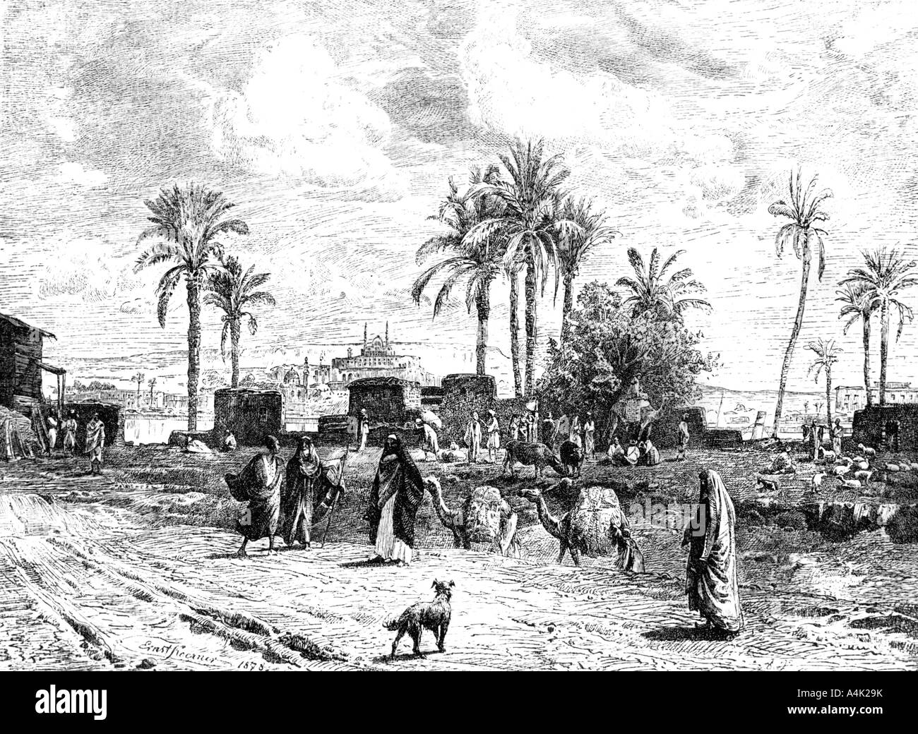 'Cairo seen of left bank of the Nile', 1881. Artist: Unknown Stock Photo