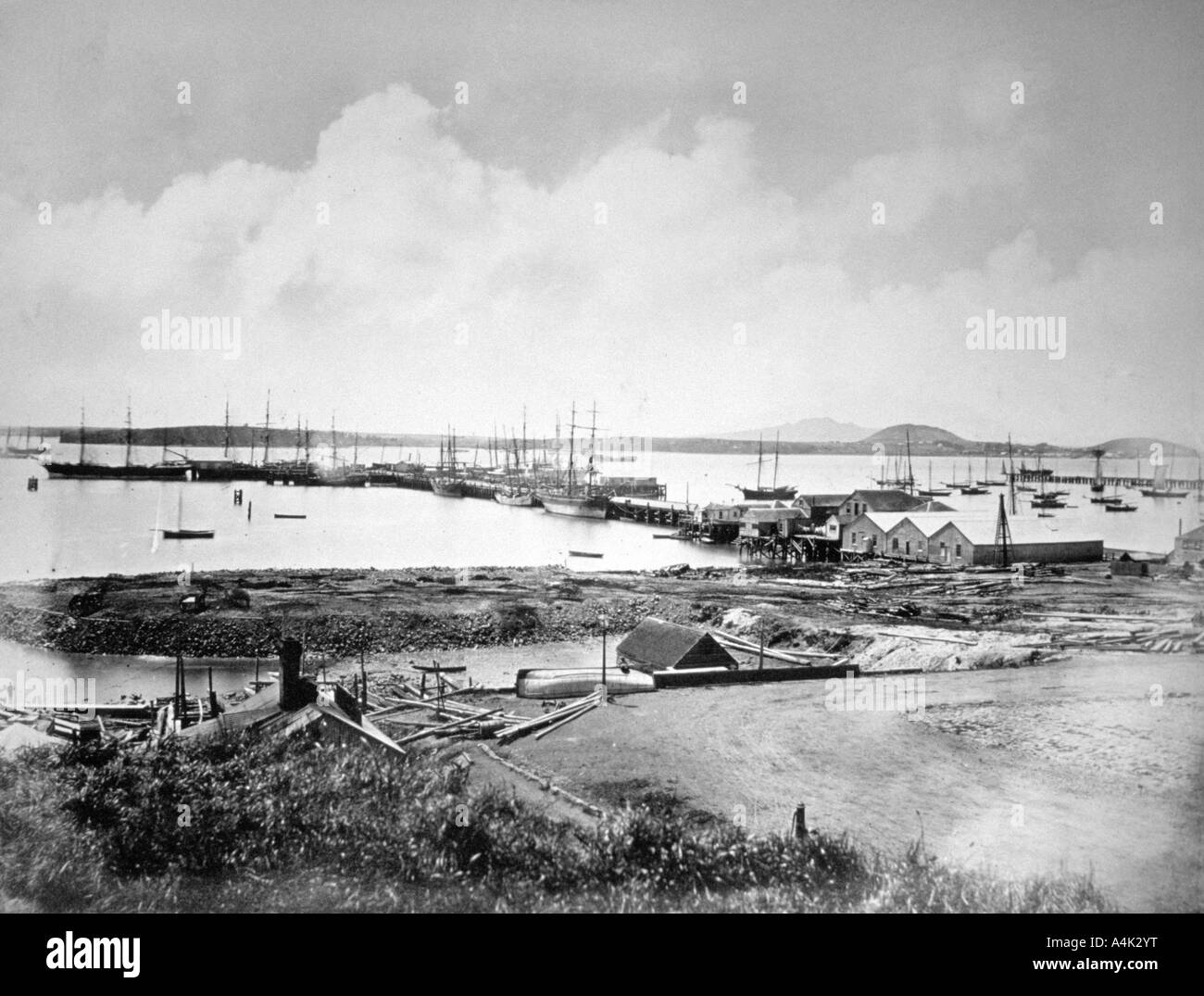 The port Auckland New Zealand c1870 1880  - Stock Image