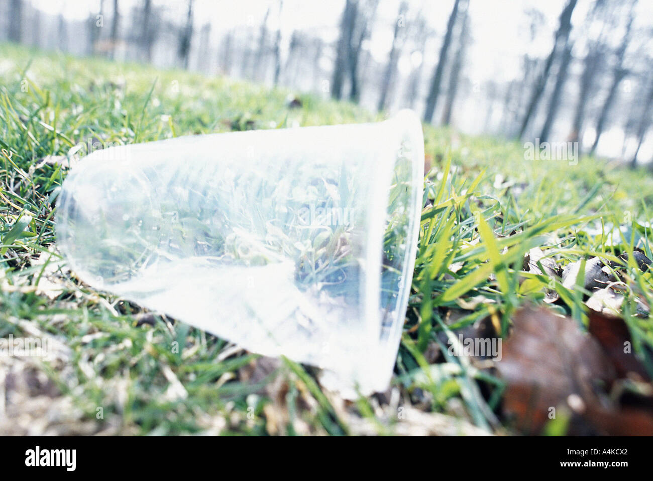 Plastic cup on grass - Stock Image