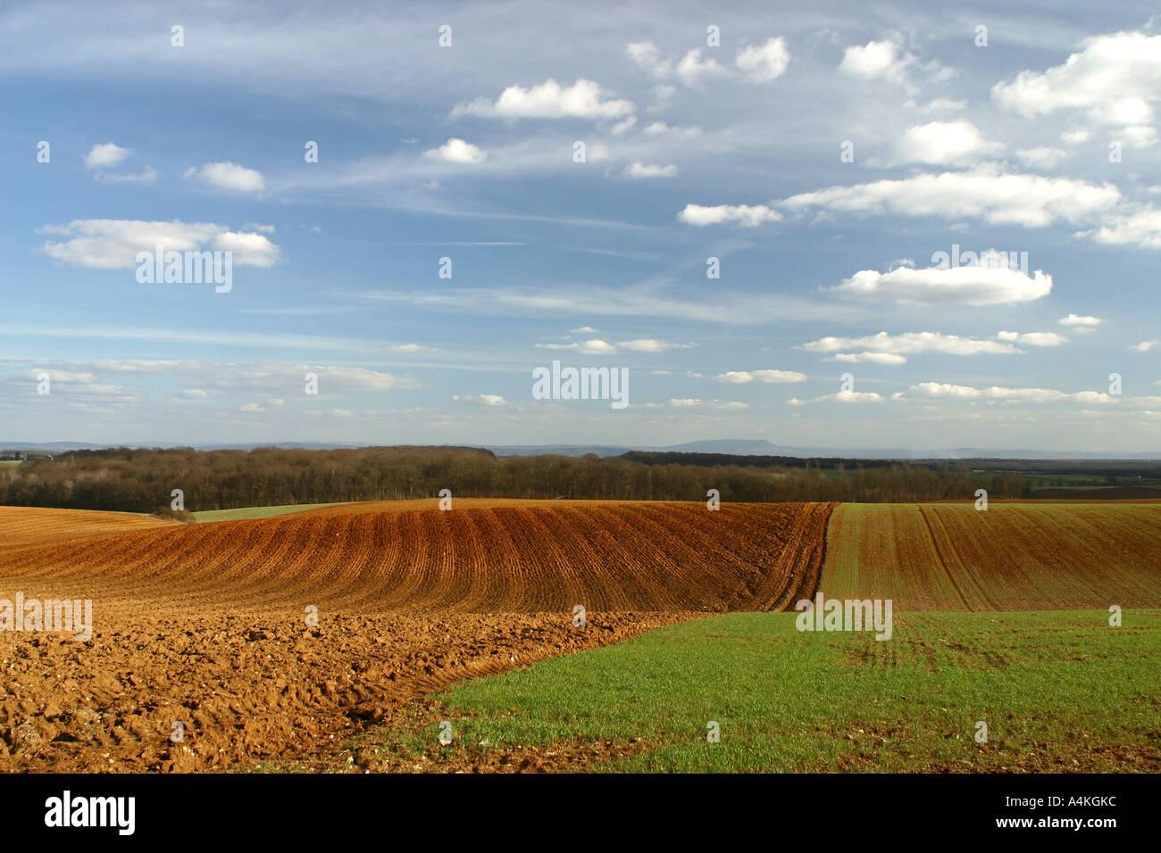 France, Jura, field in rolling landscape - Stock Image