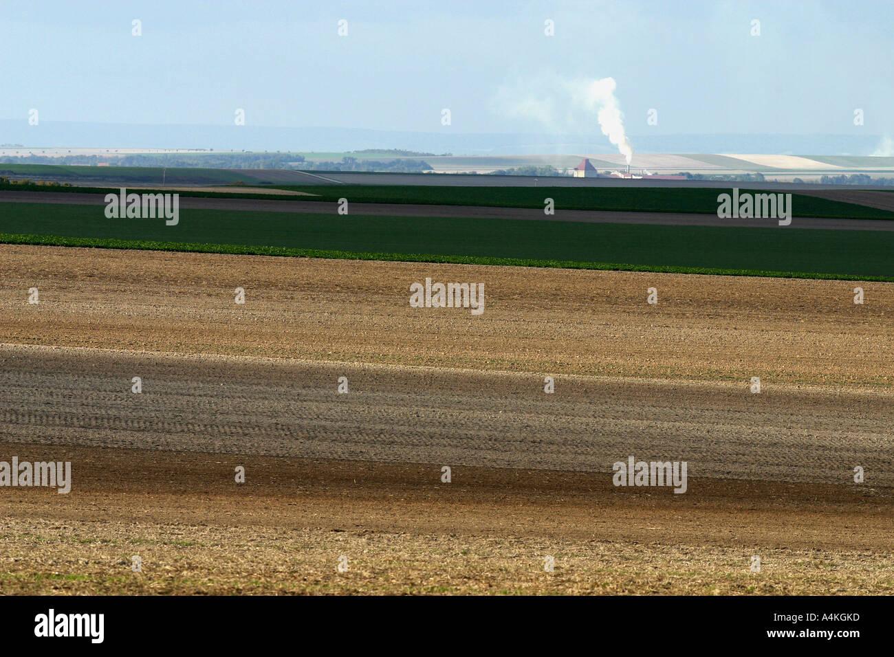 France, Champagne-Ardenne region, fields - Stock Image