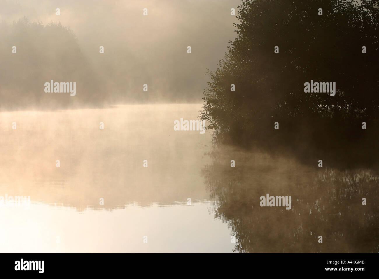 France, Jura, mist over pond - Stock Image
