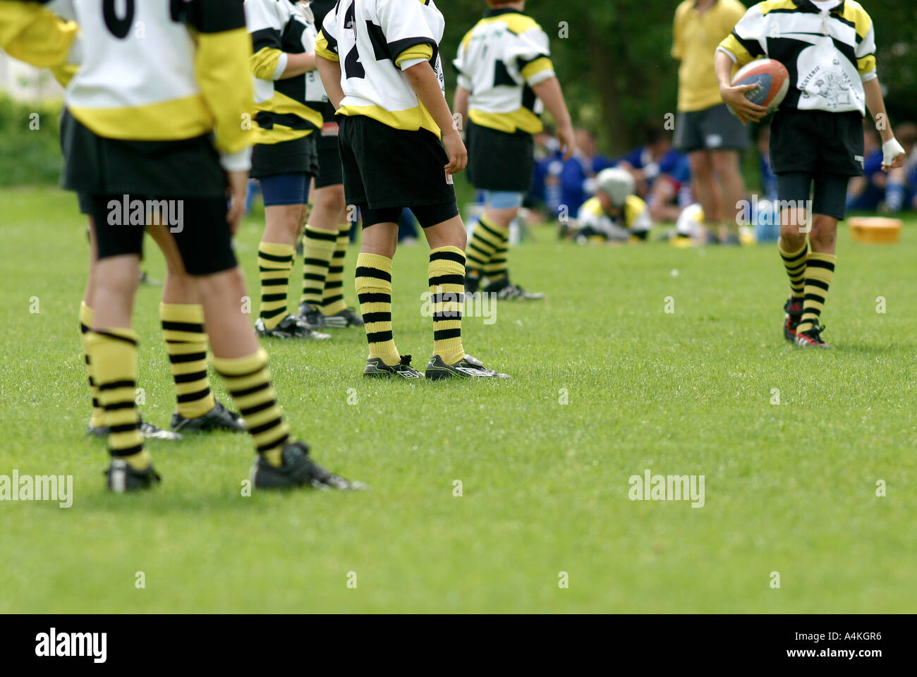 Rugby match, low section - Stock Image