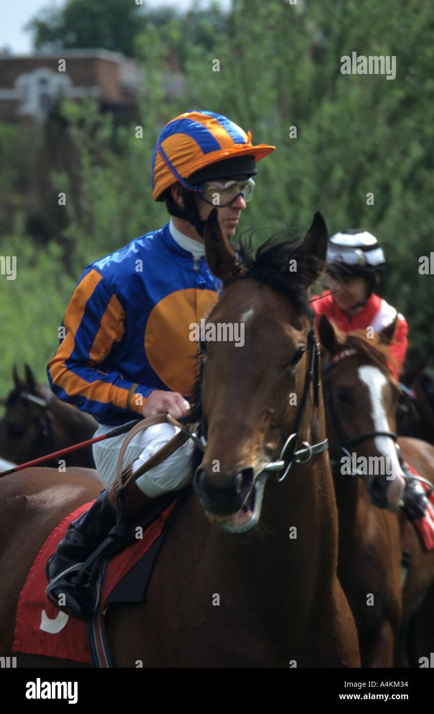 Mounted Jockey At Chester - Stock Image