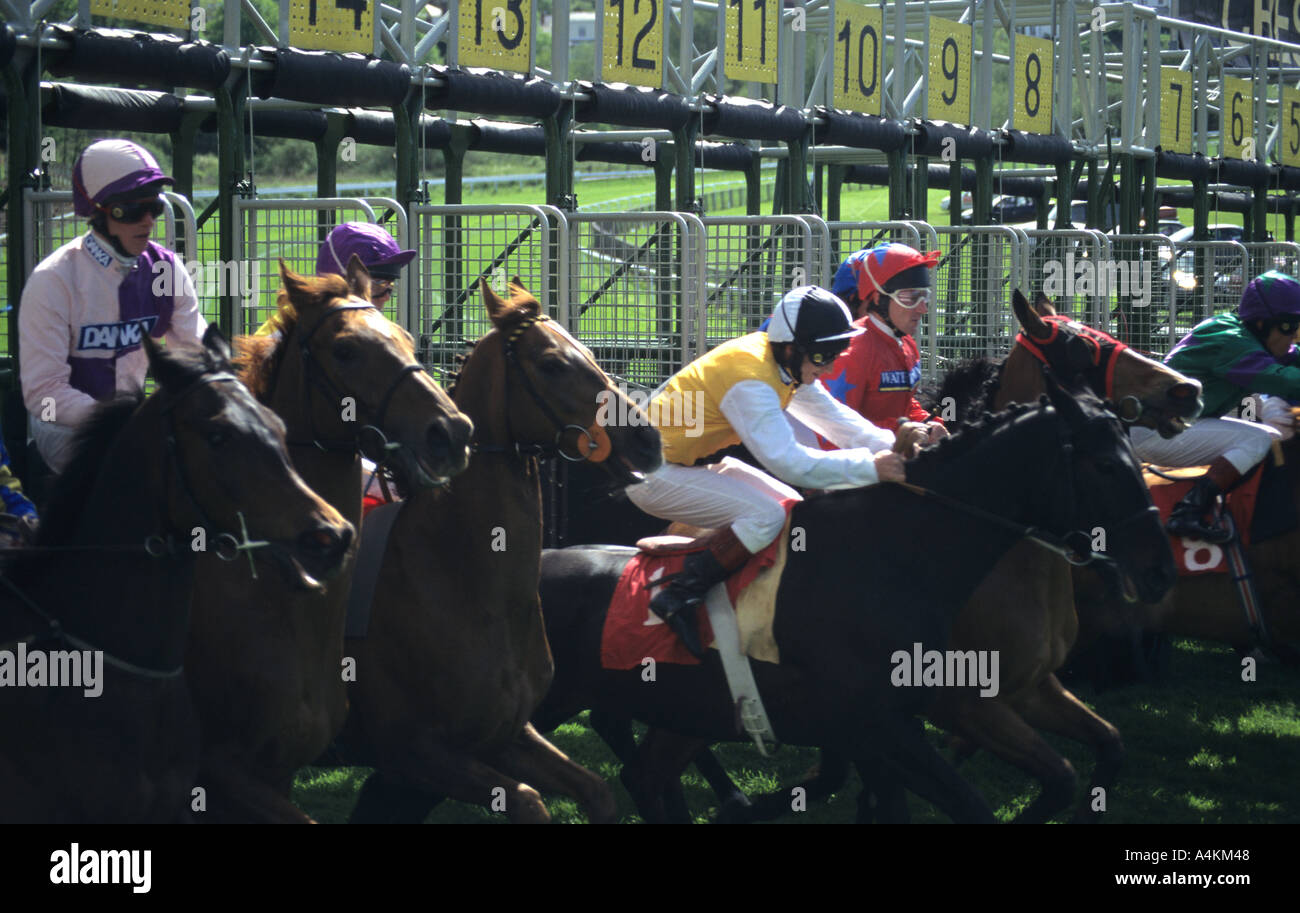 Start Of Horse Race at Chester - Stock Image