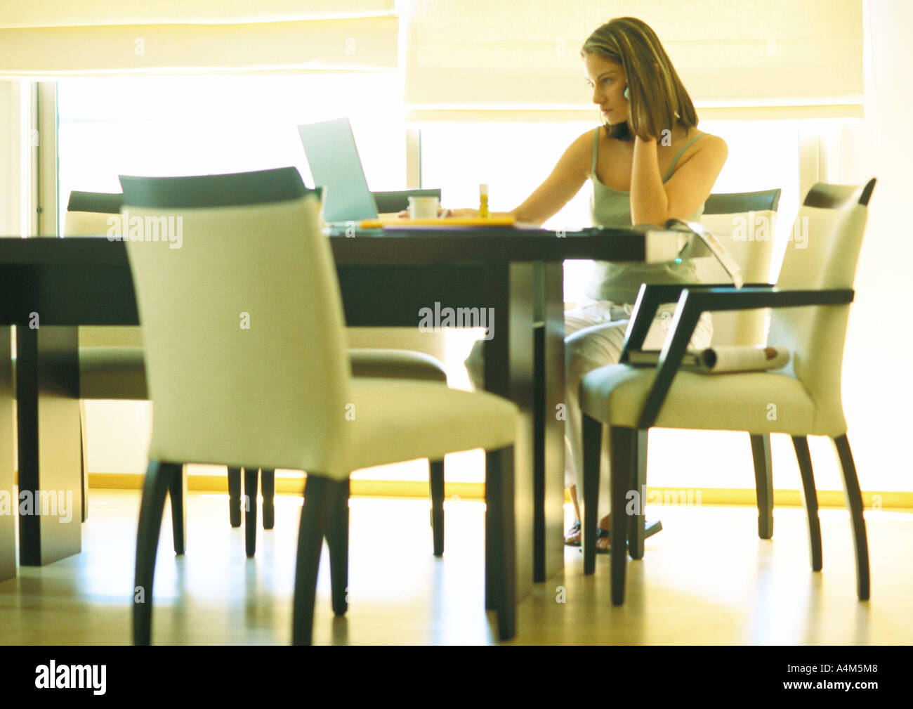 Young woman telecommuting, working at table - Stock Image