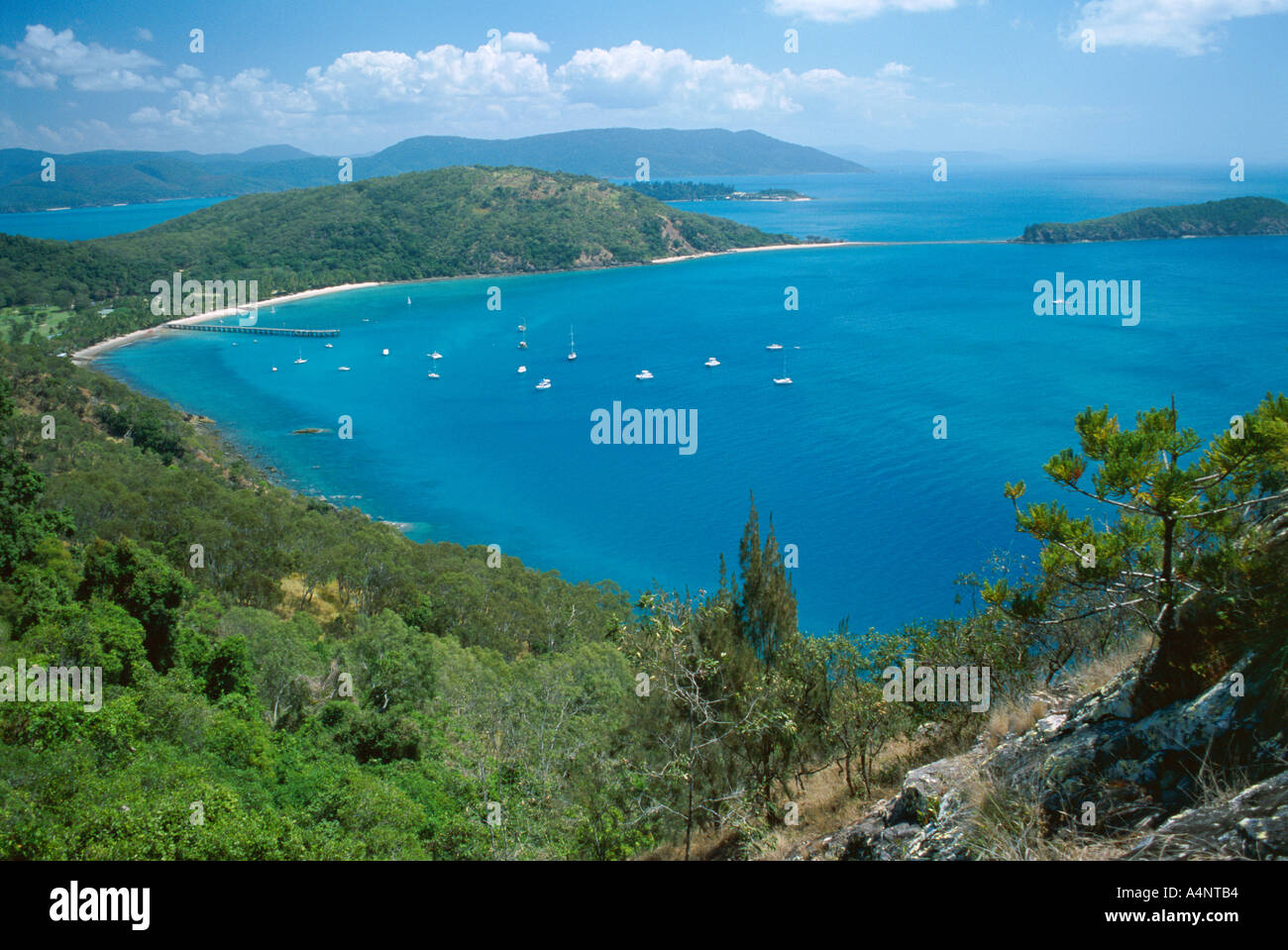 View over Bauer Bay South Molle Island Whitsundays Queensland Australia Pacific - Stock Image