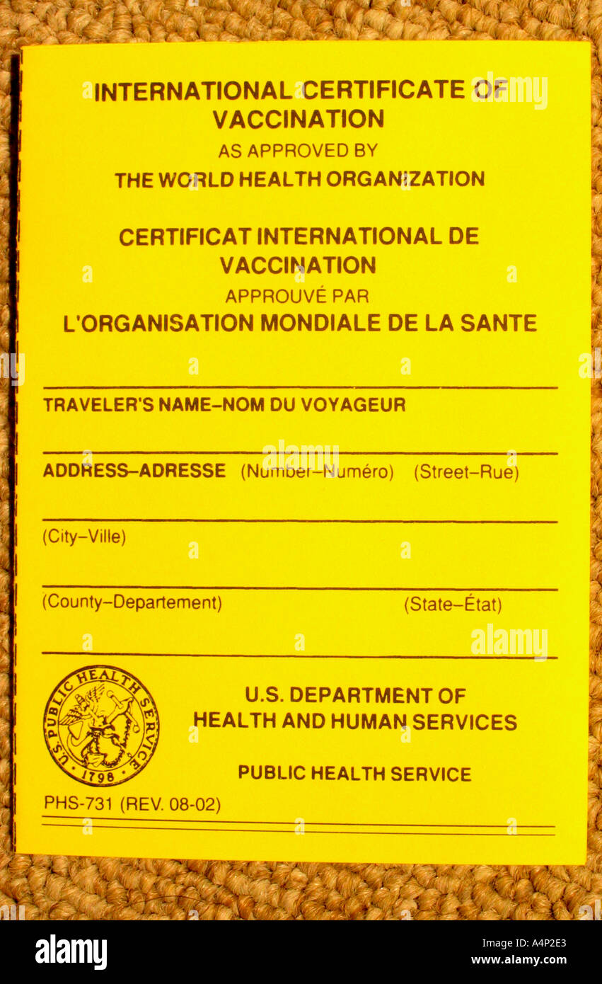 Vaccination Record International Certificate Vaccination Stock