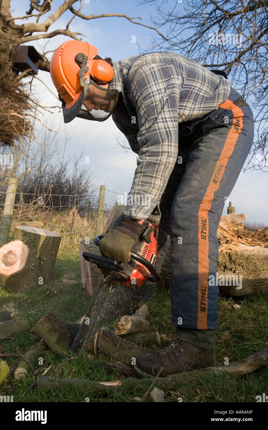 how to cut up a fallen tree with a chainsaw