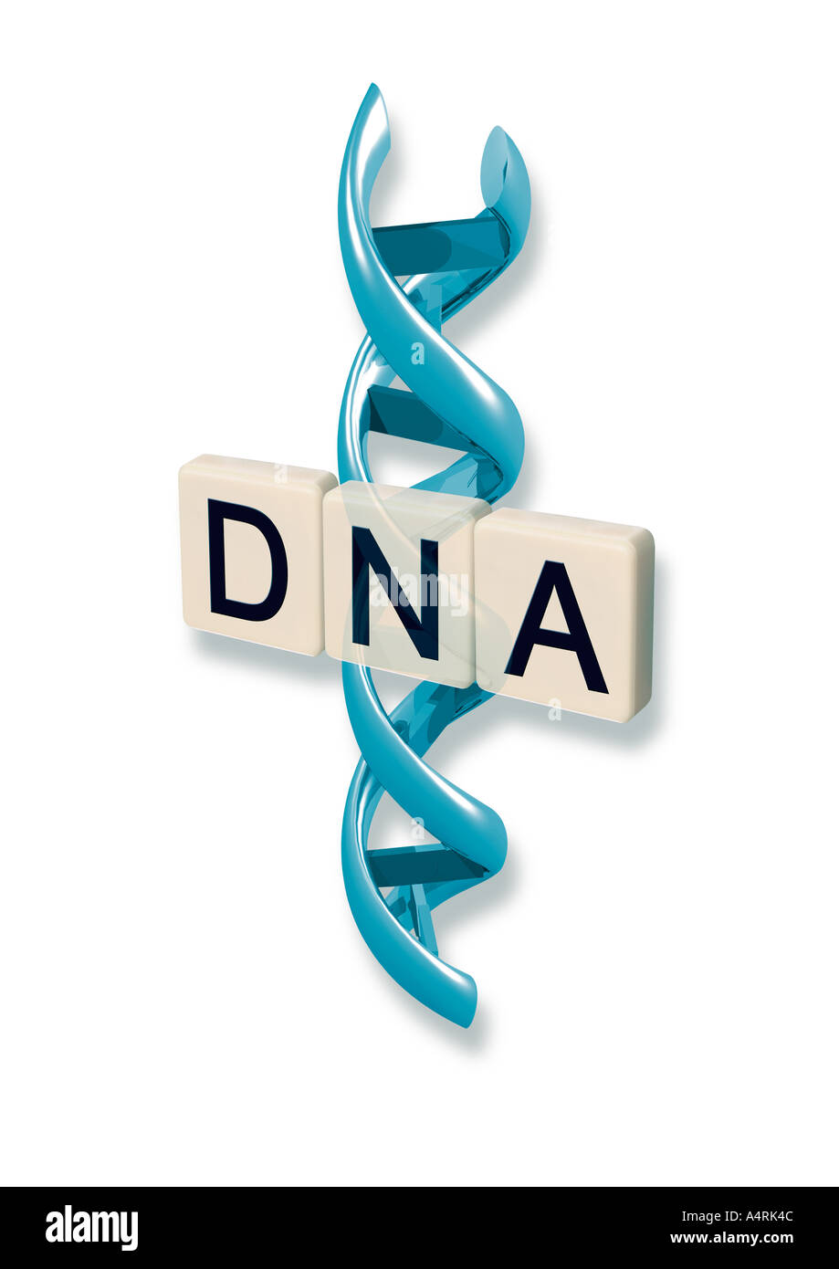 what is the four letter dna alphabet letters dna with helix schriftzug dna mit alphadoppelhelix 24502