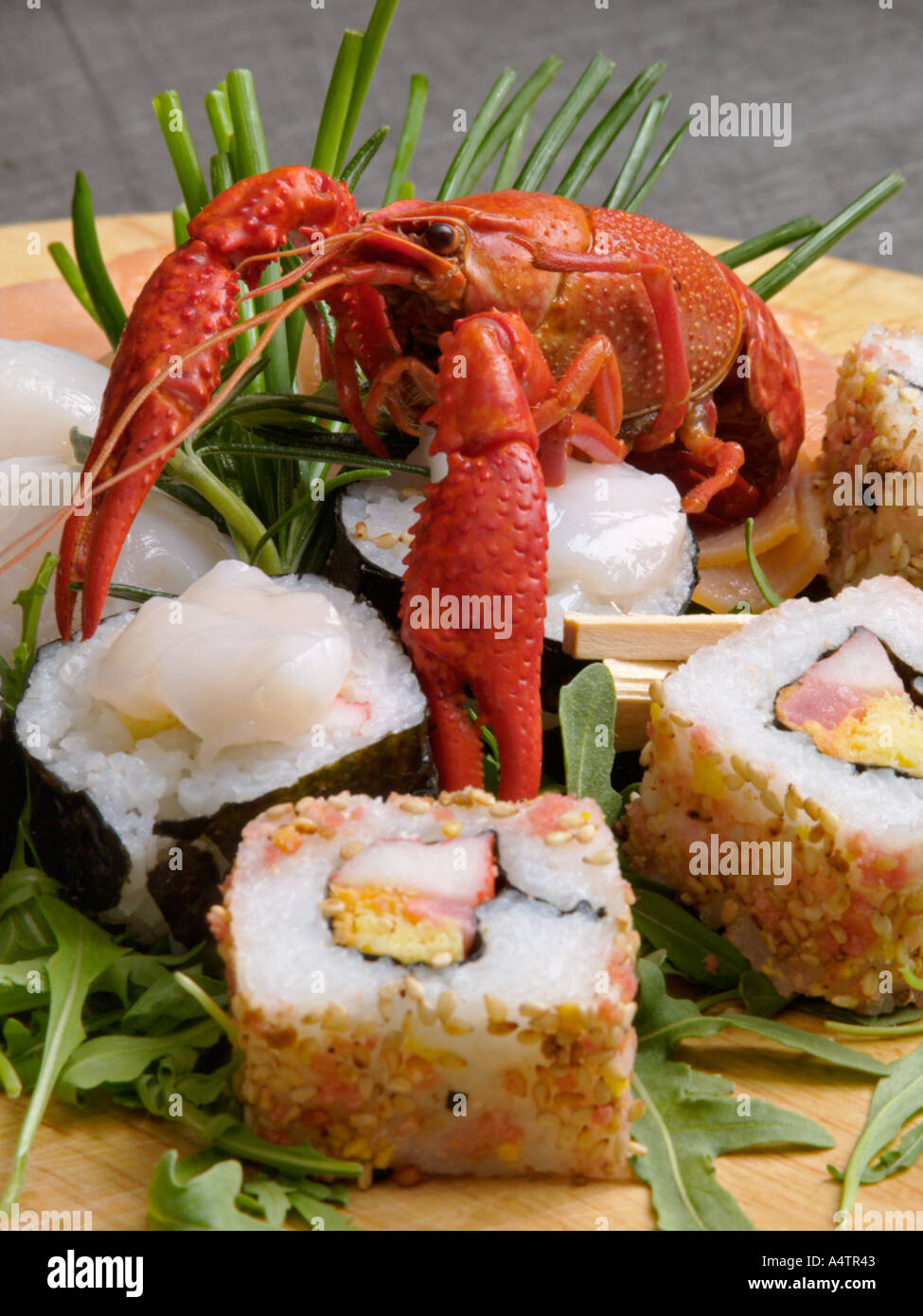 Two kinds of sushi with bright red small lobster japanese seafood raw fish rice snack - Stock Image