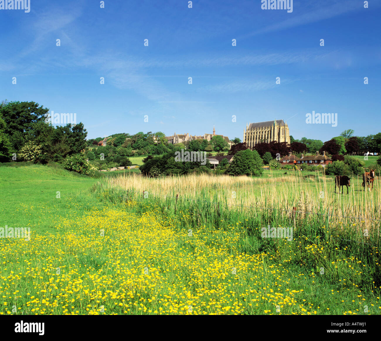 GB   SUSSEX   THE SOUTH DOWNS   ADUR VALLEY AND LANCING COLLEGE Stock Photo