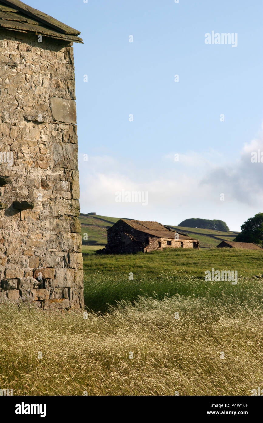 Stone Buildings and Farmland in Yorkshire Dales - Stock Image