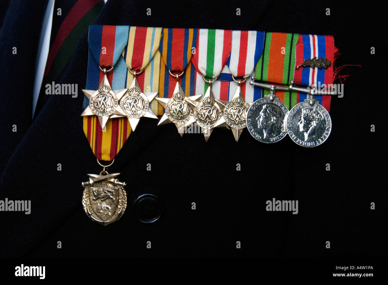 Medals and awards war of veteran on Armistice Day London England UK - Stock Image