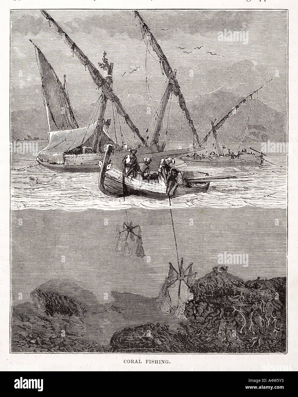 Coral dredging fish grapple Boat sail water coast reef bay cross section break rope harvest trade commerce marine maritime sea w - Stock Image
