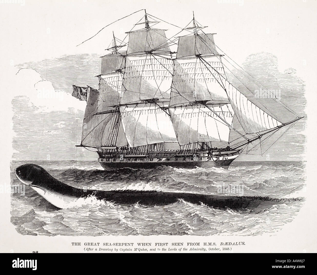 sea serpent myth legend mammal animal snake monster folklore marine nautical sail boat ship creature imagination extinct enalios - Stock Image