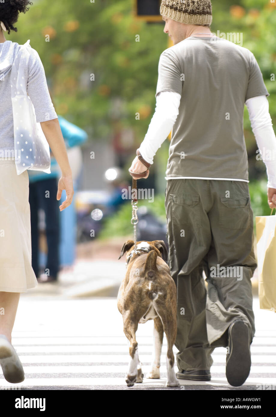 Young couple with dog crossing street - Stock Image