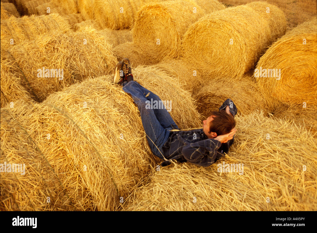 Relaxing on hay bails at a Dude Ranch Knife River Ranch North Dakota - Stock Image