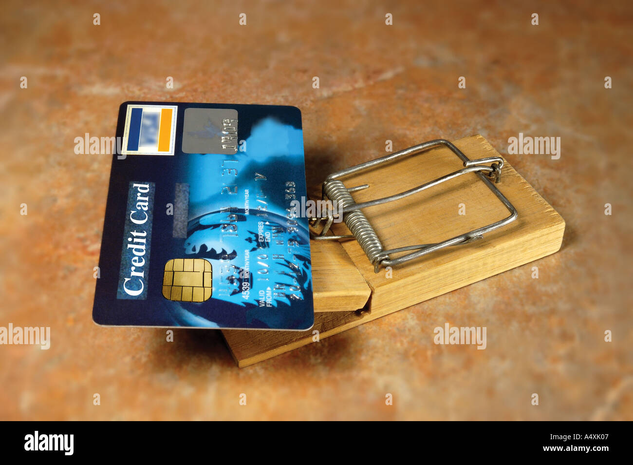 credit card on a mouse trap - Stock Image