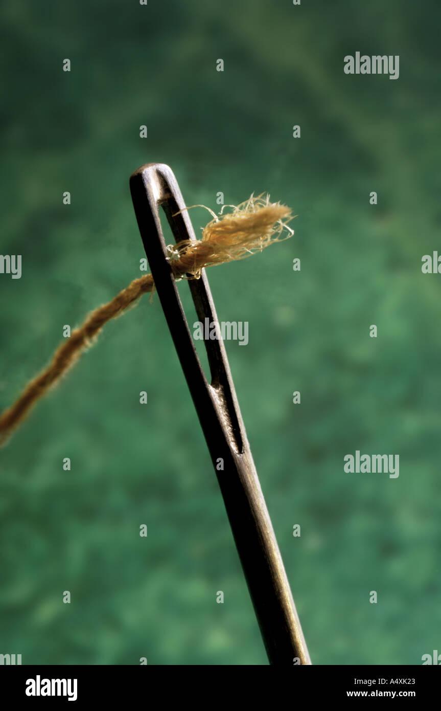 thread through eye of a needle - Stock Image