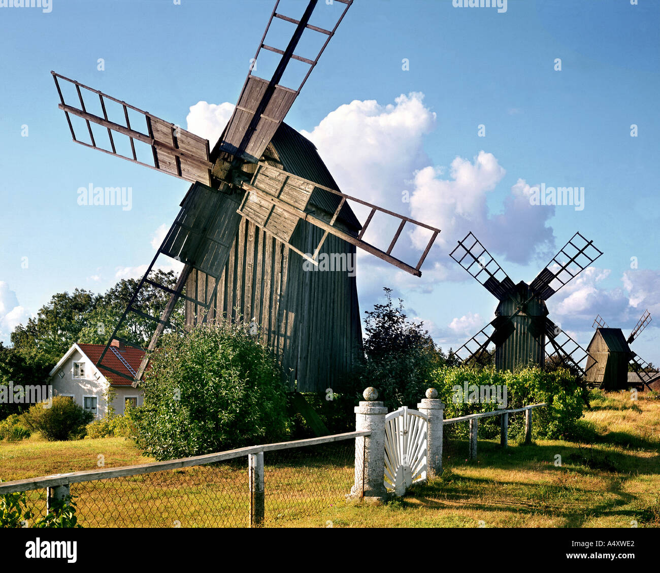 SE -  KALMAR: Windmills on Oland - Stock Image