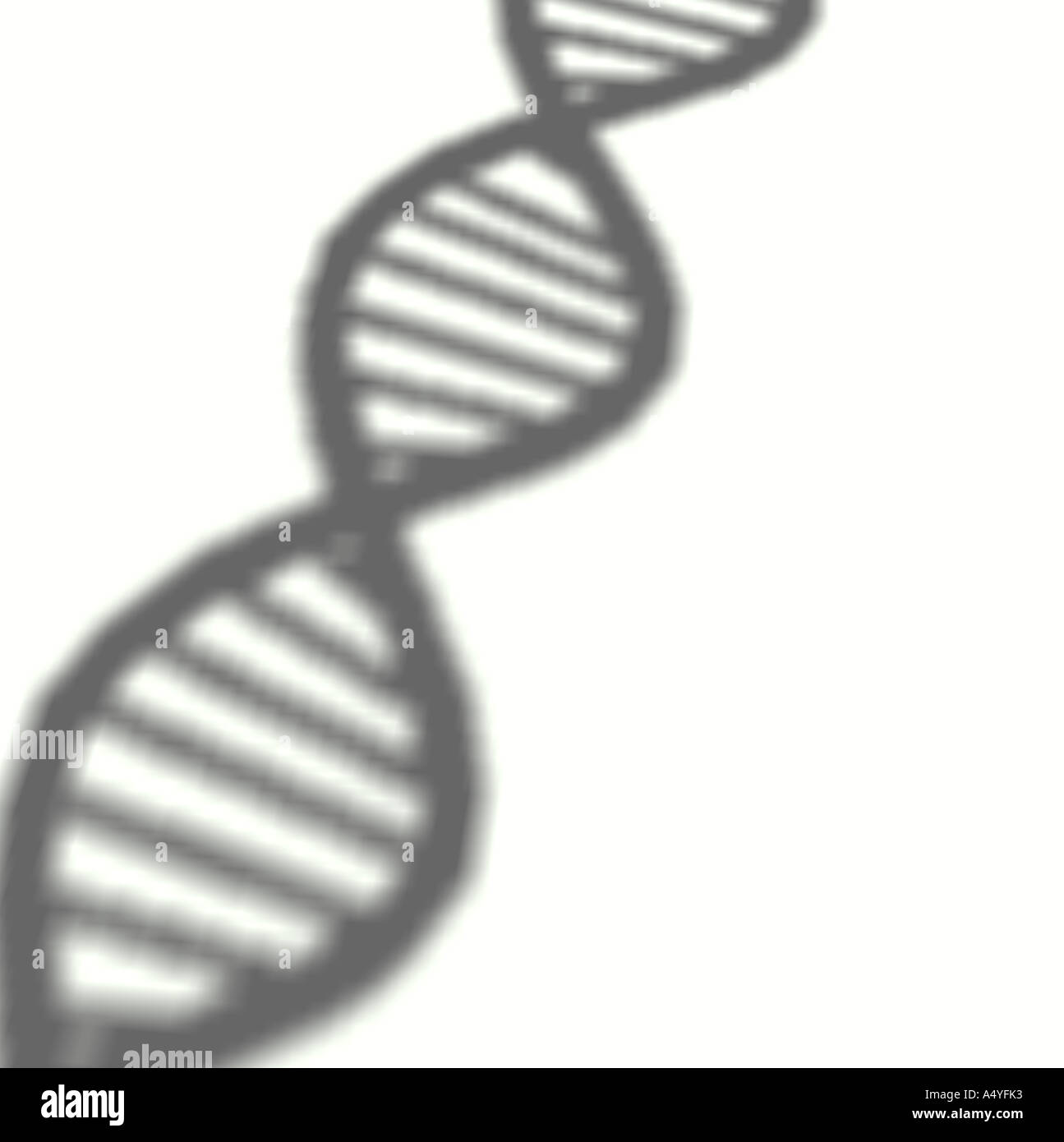 Deoxyribonucleic acid (DNA) double helix Stock Photo